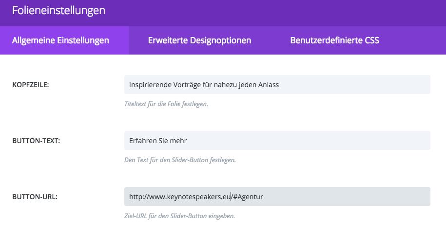 URL Eingabe für One Page Website (Screenshot Divi Theme)