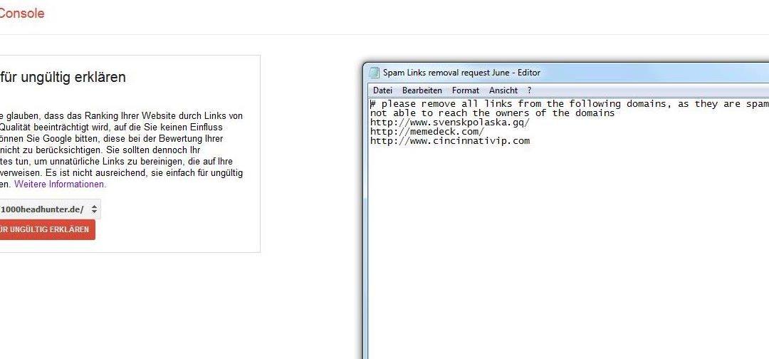 Google Disavow Tool Beispiel